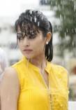 Disha Pandey (aka)