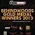 Behindwoods Gold Performers 2013 - Winners