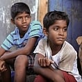 Is Kaakka Muttai in the Oscar race?