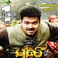 How long is Puli?