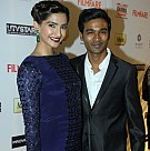 59th Idea Filmfare Awards 2013 Pre Awards Party