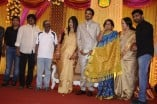 Actor Ramarajan and Nalini Son Wedding Reception