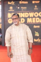 Behindwoods Gold Medals 2017 - The Red Carpet Set 3