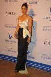 Bollywood Celebs at Grey Goose Fly Beyond Awards 2014