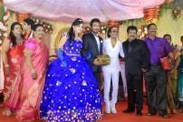 Director R. Pandiarajan's Son Prithvirajan Weds Akshaya Wedding Reception