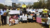 Jallikattu protest across the globe