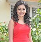 Nenjil Oru Kadhal and Santhai Movie Launch