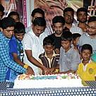 NTR Birthday Celebrations