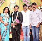 Producer Swaminathan's Son Wedding Reception