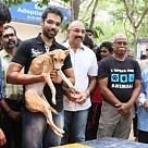 Sathyaraj & Sibiraj rescue a dog which survived the Porur disaster