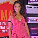 SIIMA Awards Red Carpet