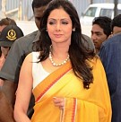 Sridevi Launches Housing Project at Nashik