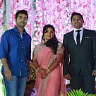 VTV Ganesh's Daughter Wedding Reception
