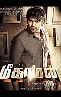 meaghamann Songs Review