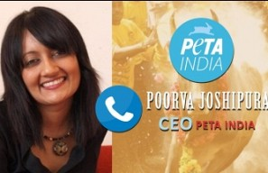 PETA will go to court if Jallikattu ban revoked - Poorva Joshipura, PETA India CEO