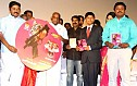 Pulipaarvai Audio Launch