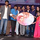 Okka Ammayi Thappa Audio Launch
