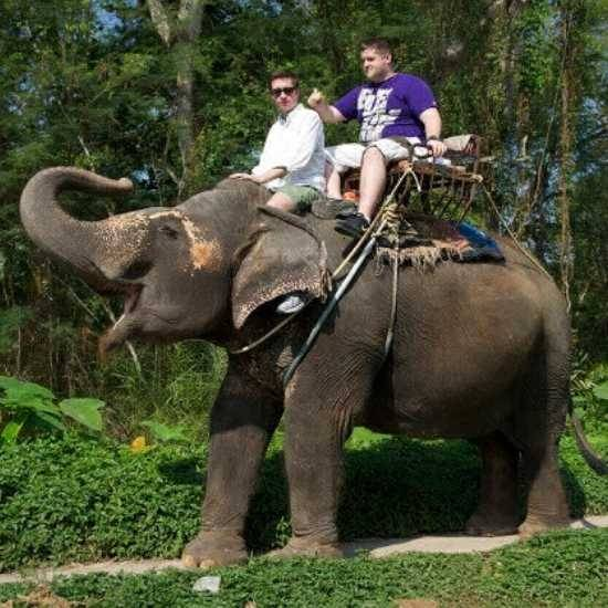 Elephant safari in Gavi, Kerala