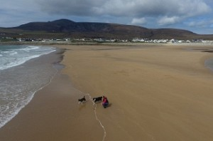Beach reappears 33 years after vanishing into ocean