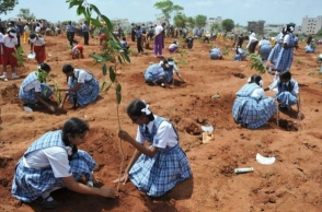 Delhi students to get up to 5 marks for planting trees