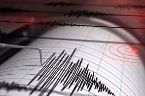 Earthquake jolts parts of India