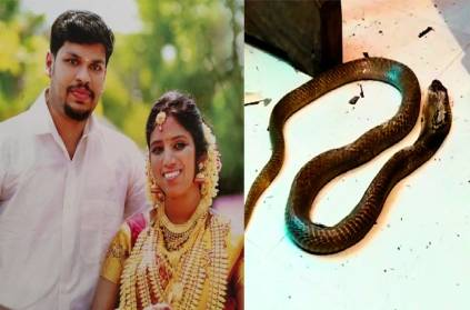 Kerala \'Snake bite\' Murder Case:Police Extract DNA from Snake