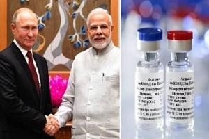 Tested Russian Vaccine 'Sputnik V' Arriving to India? - Details of Russian Ambassador's Statement