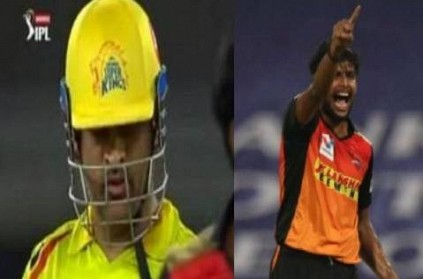 ashwin reacts after tnatarajan gets his dream wicket of msdhoni