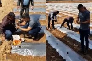 VIDEO: Dhoni Begins Working on His Organic Farming Field