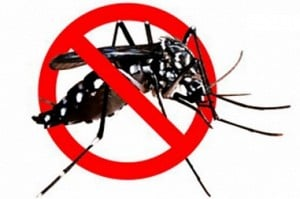 3000 notice issued for anti-mosquito drive