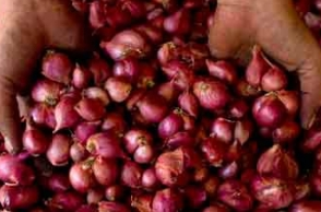 Chennai: Small onion price shoots up