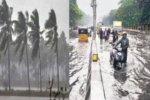 Cyclone Nivar: IMD Shares Details As To When Will Storm Cross TN, Puducherry and Wind Speed