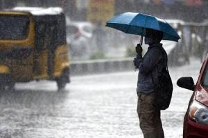 Tamil Nadu Stay Alert! IMD Says More Rainfall Expected in Next 24 Hours: Details Here