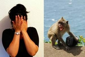 Ever imagined monkeys could steal your Life Savings? This Tamilnadu Woman's account of the theft will leave you Shocked!