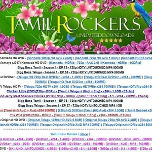 Massive news: Tamilrockers admin allegedly arrested