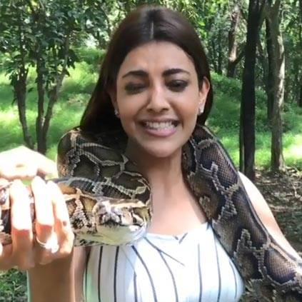 Kajal Aggarwal posts a video holding a snake from Thailand