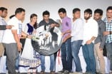 Villa Trailer Launch