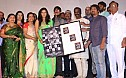 Sathuranga Vettai Audio Launch