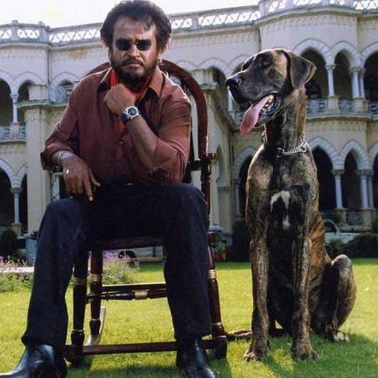 Baashha (1995)