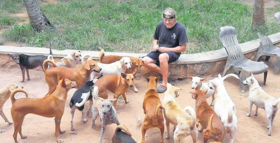 london couple came to Kerala stayed care street dogs